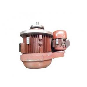Electric Hoist Double Speed Motor Unit, Mother and Child Motor