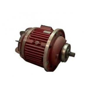 Electric hoist hoist motor